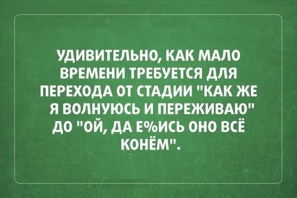 004-ellf.ru