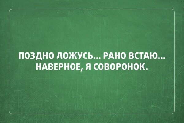 006-ellf.ru