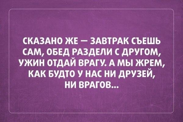 008-ellf.ru