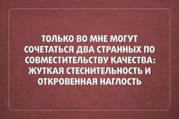 016-ellf.ru