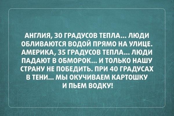 018-ellf.ru
