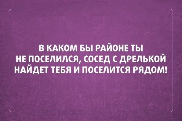 019-ellf.ru