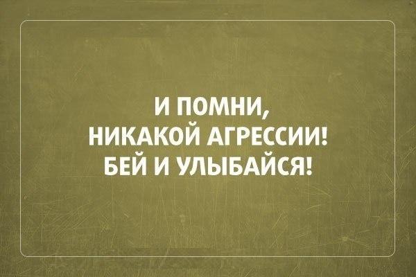 023-ellf.ru