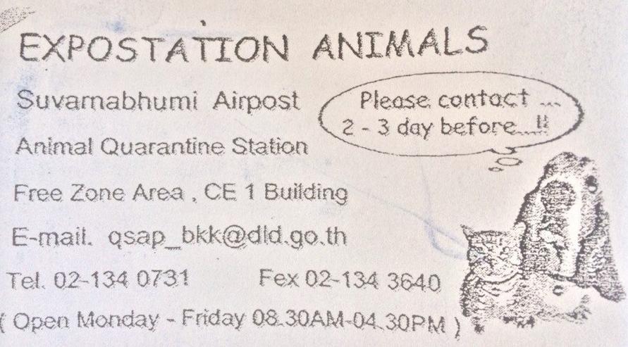 """Разве можно ожидать что-то хорошее от службы в визитке которой напечатано """"airpost"""" и """"fex"""""""